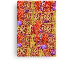 Abstract  Assemblage Canvas Print