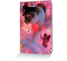 Kitty's New Favorite Hang Out Greeting Card