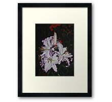 Night Time Lilies Framed Print