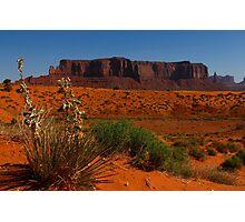 Monument Vally, Utah, USA Photographic Print