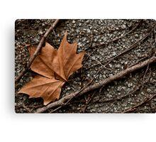 Rusty Leave  Canvas Print