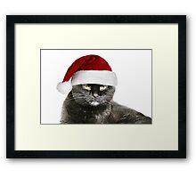 HO HO HO Humbug! Framed Print