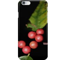 Wild Berries [iPhone - iPod Case/Skin] iPhone Case/Skin