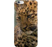 Amur Leopard Cub iPhone Case/Skin