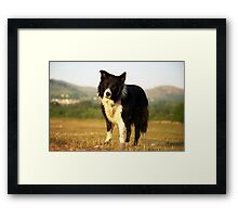 """A true friend is one soul in two bodies."" {Aristotle} Framed Print"