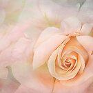 simply roses by Teresa Pople
