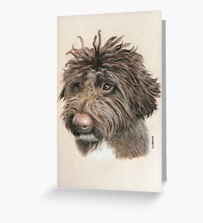 Teddie the little Lagotto Greeting Card