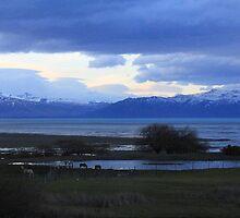 Lake of Patagonia by maashu