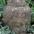 Buddha by Seraphina6