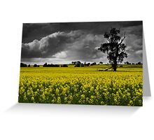 Stormy Canola Fields Greeting Card