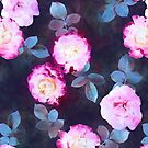 Twilight Roses by micklyn