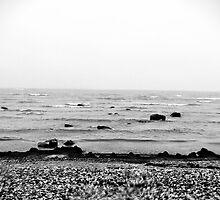 The Beach. by tutulele