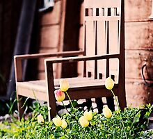 The Bench and Tulips. by tutulele