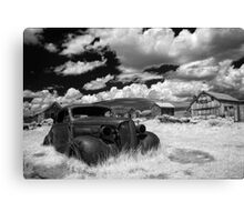 Arrested Decay Canvas Print