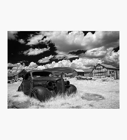 Arrested Decay Photographic Print