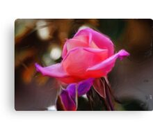 sky rose Canvas Print