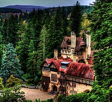 Cragside Northumberland #3 by Andrew Pounder
