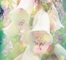 Foxgloves by MotherNature