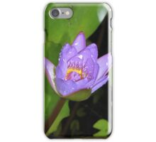 Water Lily Bud iPhone/iPod Case iPhone Case/Skin