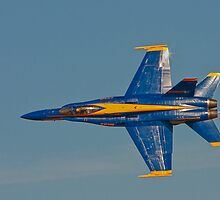 Blue Angel - Top View by Buckwhite