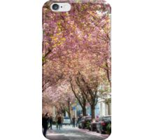 Cherry Blossom time in Bonn, Germany. iPhone Case/Skin