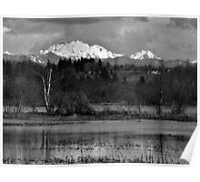 Cascade View Poster