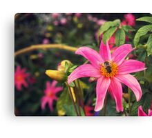 l'abeille Canvas Print