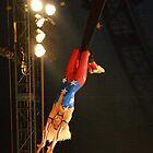 a Swinger by nastruck
