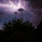 Night Light by Cynthia Broomfield