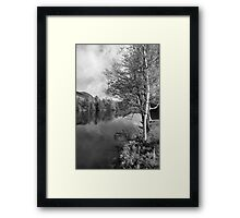 Lake Birch Trees Framed Print