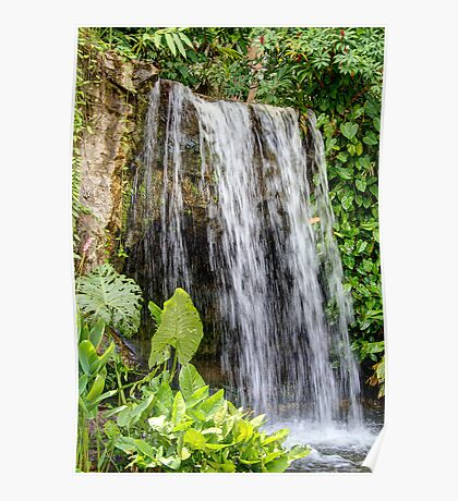 A waterfall in the Singapore Botanical Gardens Poster