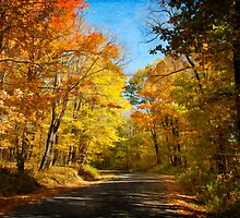 Leaf Peeping by Lois  Bryan