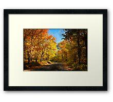 Leaf Peeping Framed Print