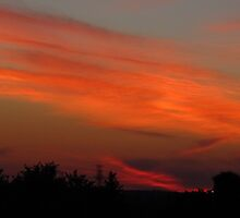 Bonfire Sky by MarianBendeth