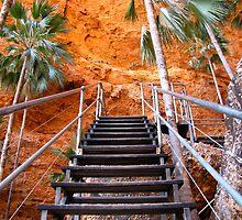 Mini Palm Gorge trail, Purnululu by DianneLac