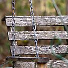 Let's Swing Away the Day by Sherry Hallemeier