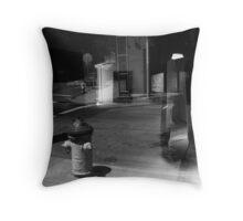 Through the Looking Glass. San Francisco 2012 Throw Pillow
