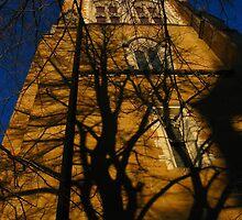st davids cathedral. hobart, tasmania by tim buckley | bodhiimages