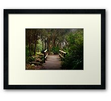 The Wisdom of Bridges (apologies to Winnie the Pooh) Framed Print