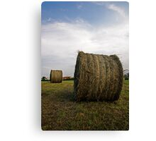 Hay ball Canvas Print