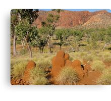 Welcome to Purnululu National Park Canvas Print