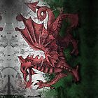 Welsh Flag by darrencp