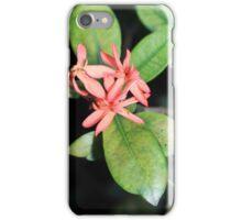 Tropical Exotic Coral Flower, Kew Gardens, London iPhone Case/Skin