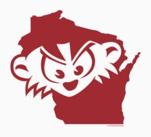 Wisconsin is MAD, Mad, MAD! by gstrehlow2011