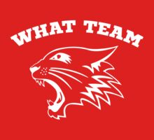 What Team? by Starfall Industries