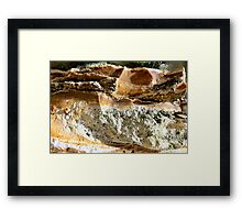 Reptile In the Sand Framed Print