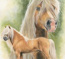 Haflinger by BarbBarcikKeith