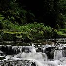 New Angle on JD Waterfall by Harry Purves