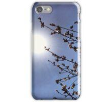 Cherry Blossom Sun Glare iPhone/iPod Case iPhone Case/Skin