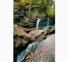 Falling Water Meets Fallen Leaves Unisex T-Shirt